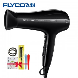 Flyco Hair Dryer