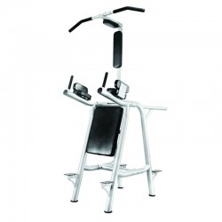Leg Raise Machine (A 63 C)