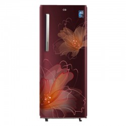 CG Single Door Refrigerator (CGS210P5.BF/RF)-200 Ltr